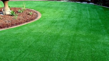 Grass To Uplift The Visual Curb Of The House