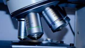 Research Grade Microscopes In Singapore
